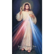 SPANISH HYLA DIVINE MERCY CANVAS GALLERY WRAPPED PRINT