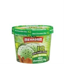 Mehadrin Mint Chocolate Chip Parve Ice Cream   56 oz