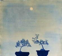 Casey Roberts, Two Bonsai