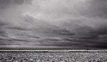 Steven Wilson, Lake Ontario March 2014 Edition 1/10