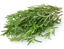 Herbs Rosemary Fresh