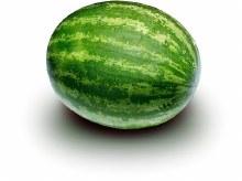 Watermelon - Whole