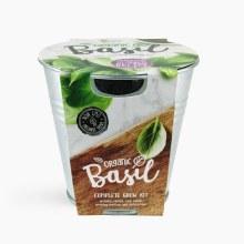 Buzzy Chef Garden Grow Kit- Basil