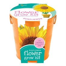 BUZZY Kids Painted Grow Pails- Cone Flower