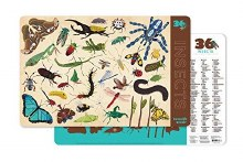 Crocodile Creek Placemats Insects