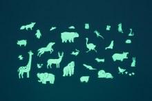 Gloplay- Animal Series