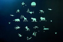 Gloplay- Safari Animal Series