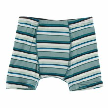 Agriculture Boxer Brief Multi Agriculture Stripe 2T-3T