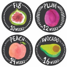 Lucy Darling Growing Garden Belly Stickers