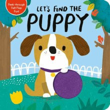 Let's Find the Puppty