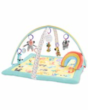 Skip Hop Activity Gym- ABC & Me