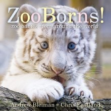 ZooBorns Board Book