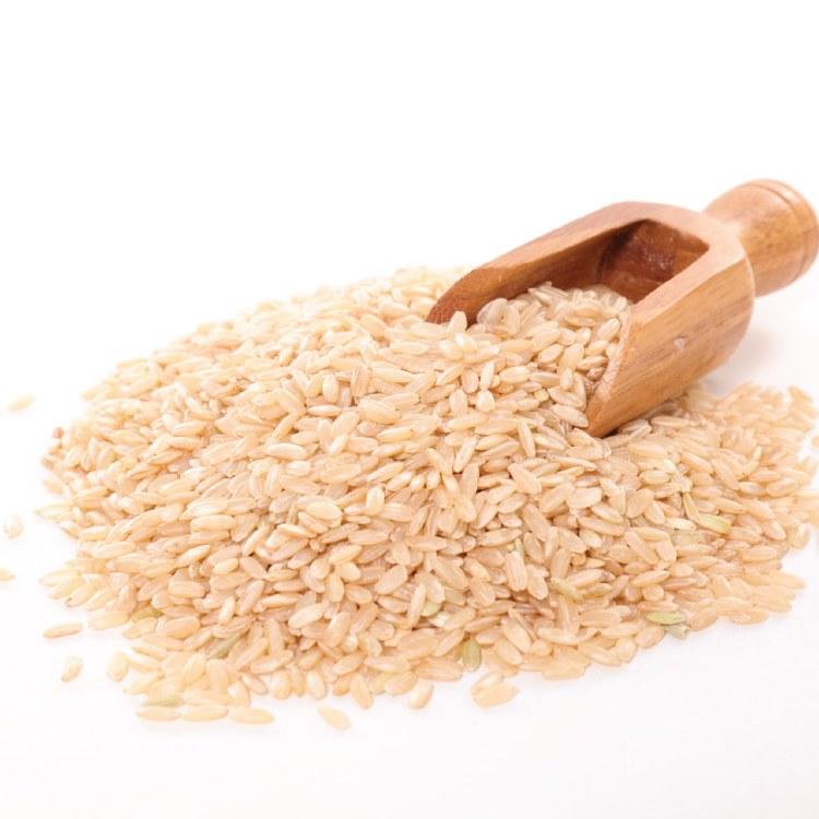 Brown Rice Med Grain 25kg Bulk