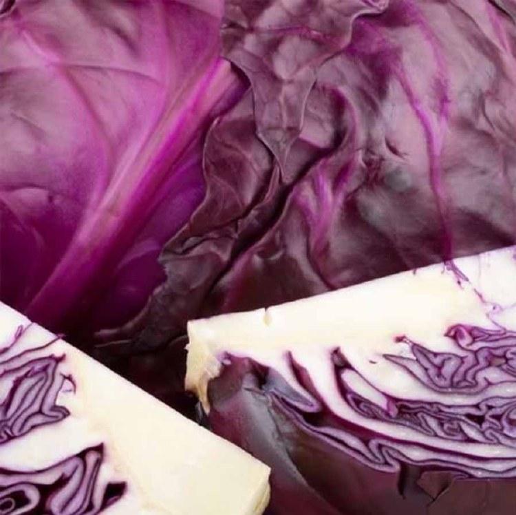 Cabbage Red Half