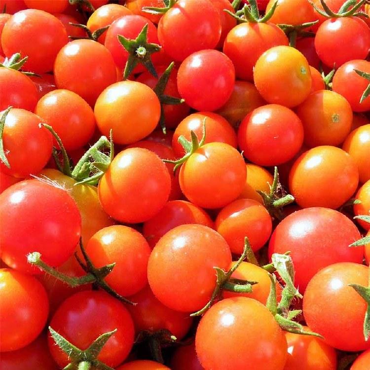 Tomatoes Cherry 250gm Punnet