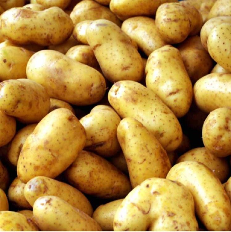 Potatoes Dutch Cream 500gm