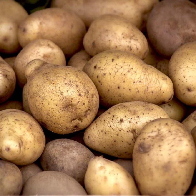 Potatoes Nicola Kilo Buy 1kg
