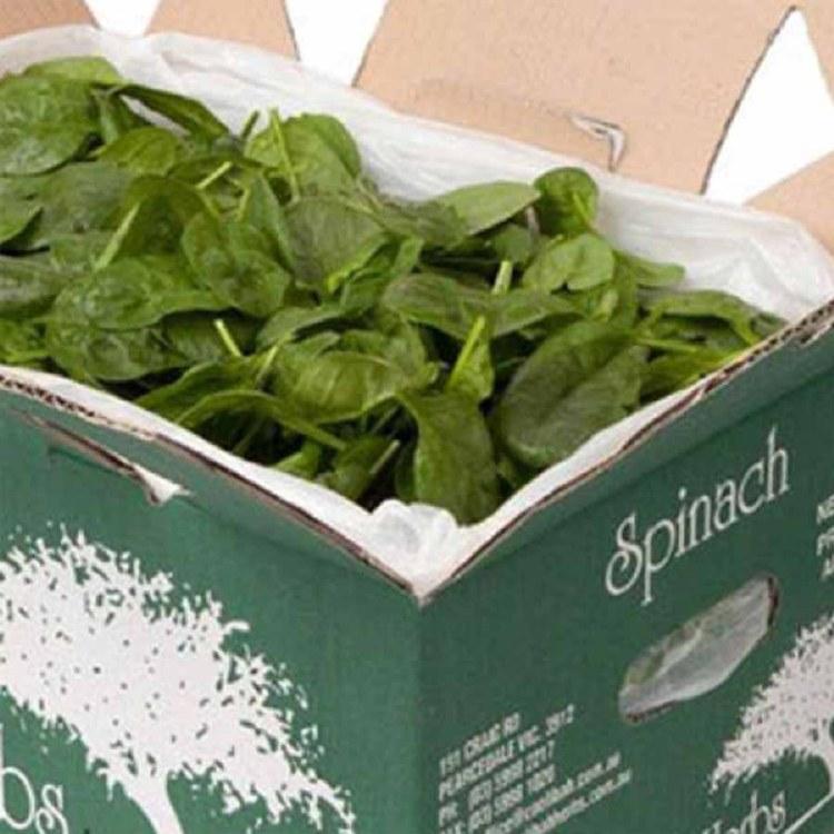 Spinach Baby Bulk 1.5kg