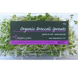 Sprouts Broccoli 50gm Punnet