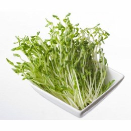 Sprouts Snow Pea 80gm