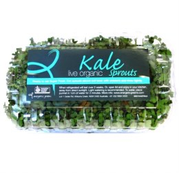 Sprouts Live Kale 150gm