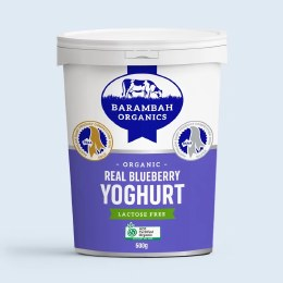 Yoghurt Blueberry 500gm
