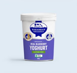 Yoghurt Blueberry 200g Small Size