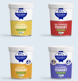 Yoghurt Bulk Box of 12x200gm