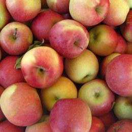 Apples Fuji Kilo Buy 1kg
