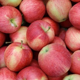 Apples Gala 500gm