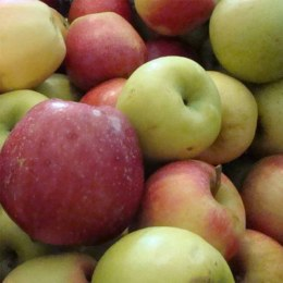 Apples Juice Grade Kilo Buy 1kg