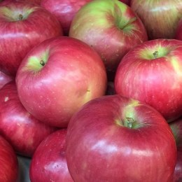 Apples Lady William 500gm