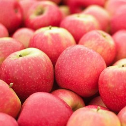 Apples Pink Lady 500gm