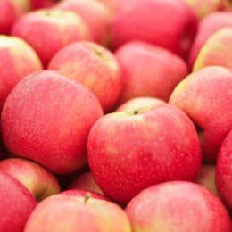 Apples Sundowner Kilo Buy 1kg