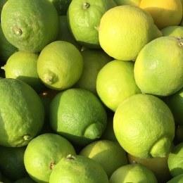 Lemons  500gm