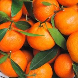 Mandarins Afourer 500gm