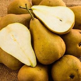 Pears Buerre Bosc 500gm