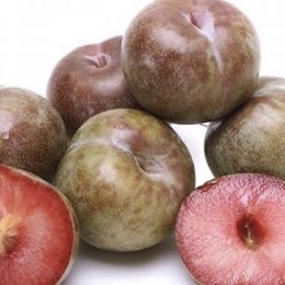 Plums Blood 500gm