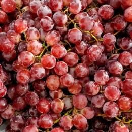 Grapes  Red Globe 500gm