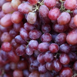 Grapes  Red Seedless 500gm