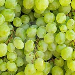 Grapes  Sultana Seedless 500gm