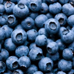 Blueberries 125gm Punnet
