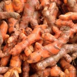 Spice Turmeric 100gm