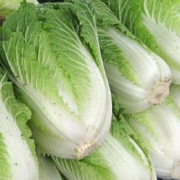 Cabbage Wombok Whole