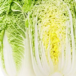 Cabbage Wombok Half