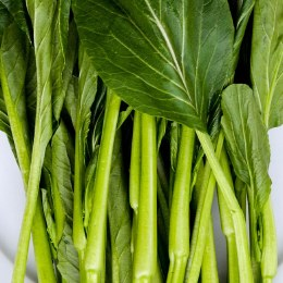 Chinese Greens Choy Sum Green Bunch