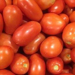 Tomatoes Roma 500gm