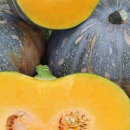 Pumpkin Jap Kilo Buy 1kg