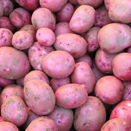 Potatoes Desiree 500gm