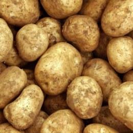 Potatoes Sebago Kilo Buy 1kg